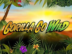go wild casino group