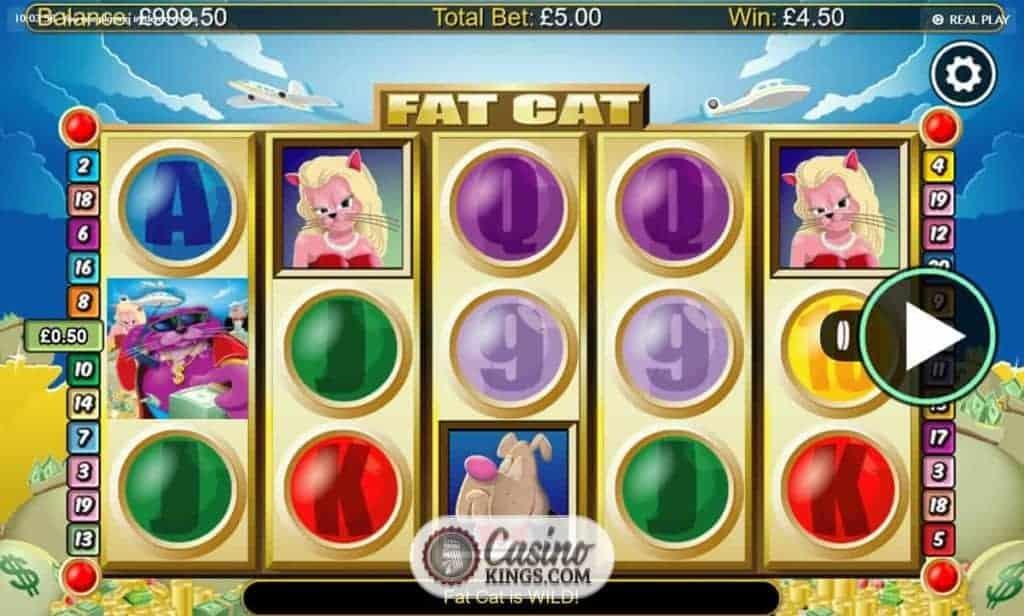Casino fat cat horseshoe casino of indiana