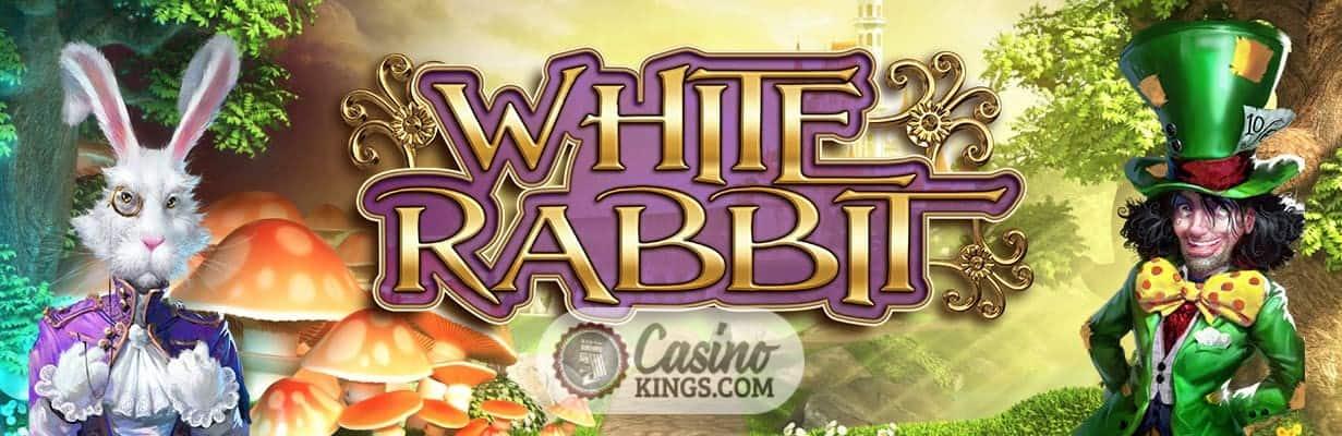 online casino with white rabbit